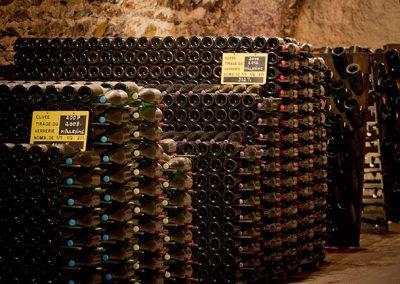 champagne-le-mesnil-sur-oger-033